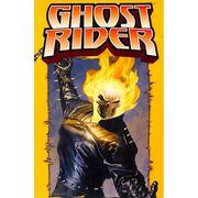 -importados-eua-ghost-rider-poster-book
