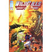 -importados-eua-wildcats-volume-1-16