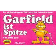 Garfield---ist-Spitze---11