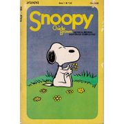 snoopy-e-charlie-brown-23