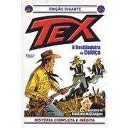 -bonelli-tex-gigante-18