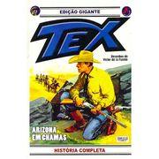 -bonelli-tex-gigante-19