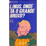 -cartoons-tiras-charlie-brown-18