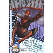 -herois_panini-homem-aranha-100