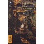 -herois_abril_etc-sandman-64