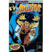 -importados-eua-jaguar-01