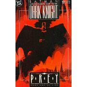 -importados-eua-legends-of-the-dark-knight-011