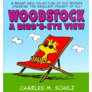 -importados-eua-woodstock-a-birds-eye-view