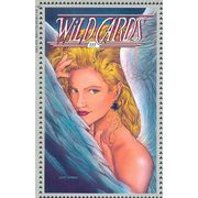 Wildcards---3