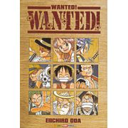 One-Piece-Wanted-