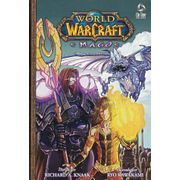 World-of-Warcraft---Mago