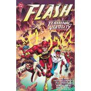Flash---Terminal-Velocity-TPB