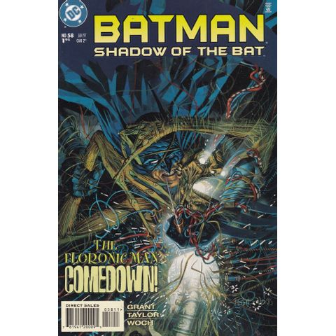Batman---Shadow-of-the-Bat---58