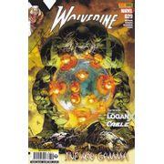 Wolverine---355