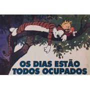 Calvin-e-Haroldo---Os-Dias-Estao-Todos-Ocupados