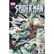 Peter-Parker-Spider-Man---49
