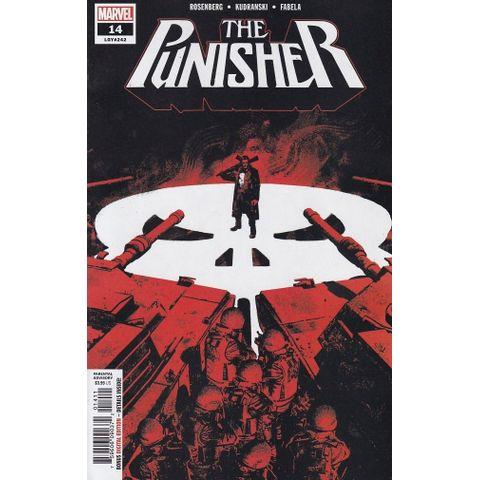 Punisher---Volume-13---14