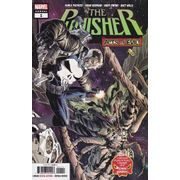 Punisher-Annual---Volume-13---1