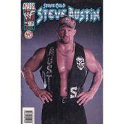 Stone-Cold-Steve-Austin---3