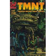 Teenage-Mutant-Ninja-Turtles---Volume-3---17