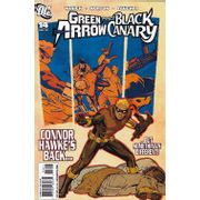 Rika-Comic-Shop--Green-Arrow-Black-Canary---14