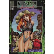 Rika-Comic-Shop---Wildstorm-Swimsuit-Special---1