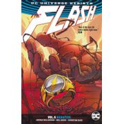 Flash---05--Negative--TPB-